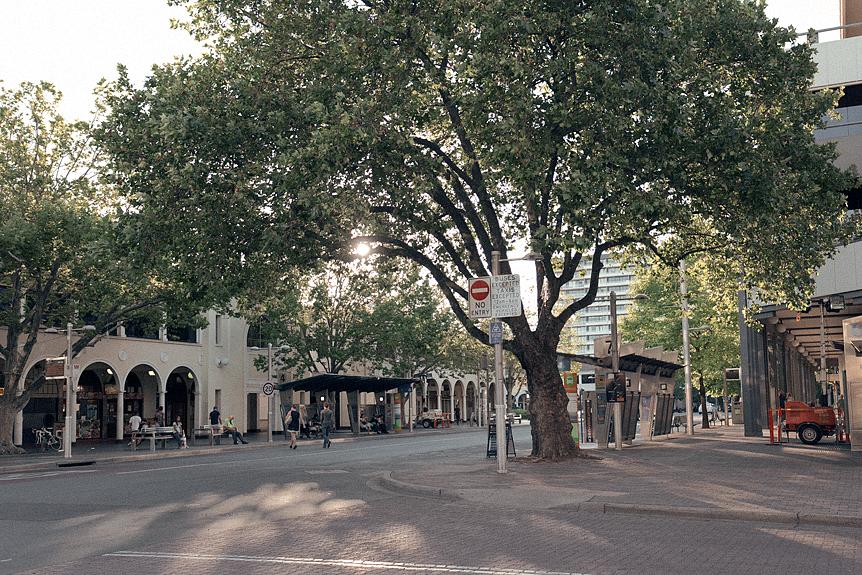 Travel Throwback Thursday: Canberra 2016
