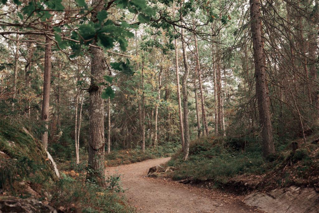 Lövhagens friluftsområde